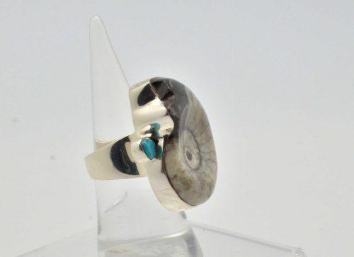Ammonite and Turquoise